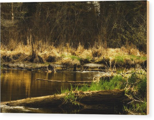Country River Wood Print by Gary Smith