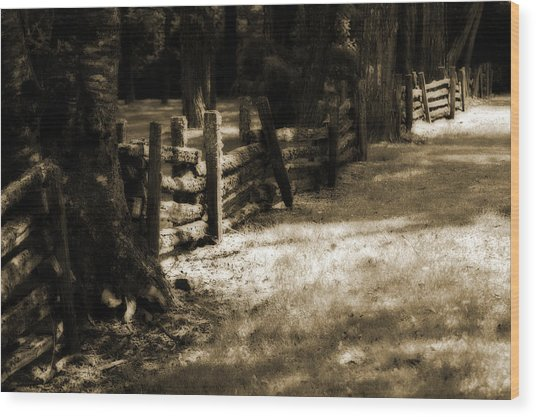 Country Romance Wood Print by Terrie Taylor