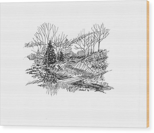 Country Scene 3 Wood Print