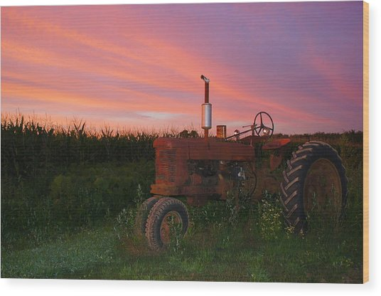 Country Sunset Wood Print by Corrie McDermott