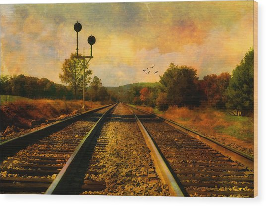 Country Tracks Wood Print by Kathy Jennings