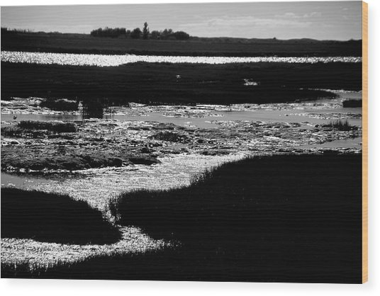 Covering The Marshes Wood Print by Jez C Self