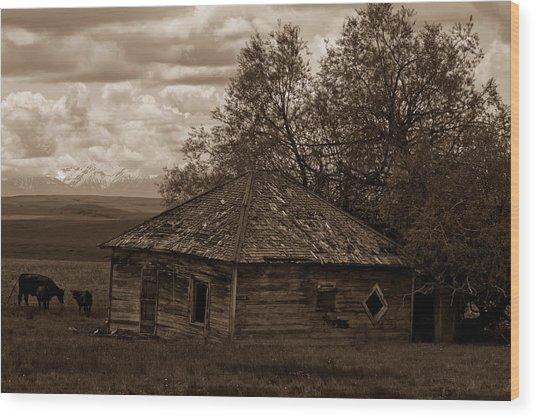 Cow House Wood Print by Jen TenBarge