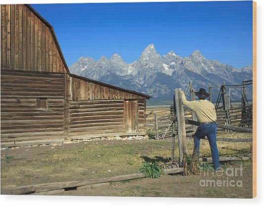 Cowboy With Grand Tetons Vista Wood Print
