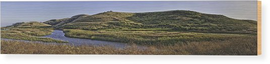 Coyote Hills Regional Park Wood Print by Nathaniel Kolby