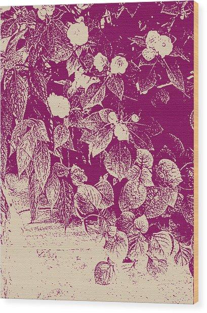 Cranberry Cascade Wood Print