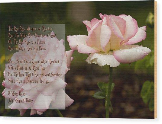 Cream White Rosebud With Poem Wood Print