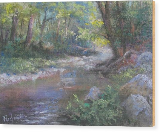 Creek Study Wood Print