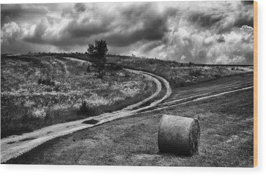 Cross-roads Wood Print by Ferenc Farago Photograph Art