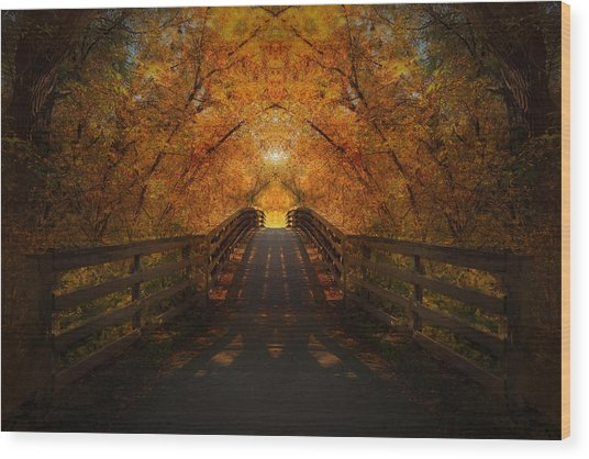 Crossing Over - Color Wood Print