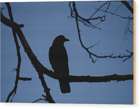 Crow Silhouette Wood Print
