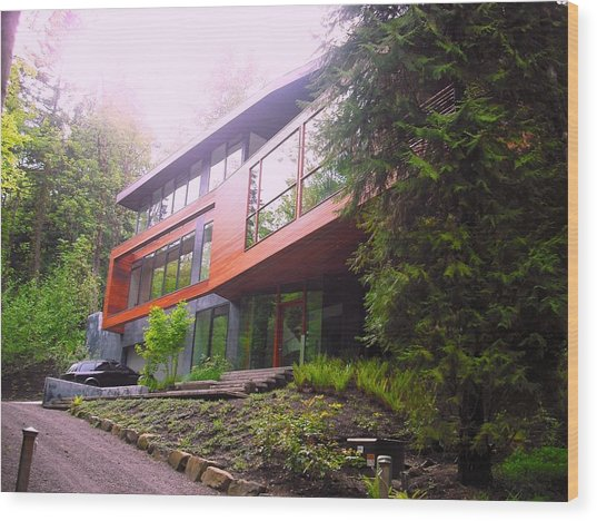 Cullen House Aka Hoke House Wood Print