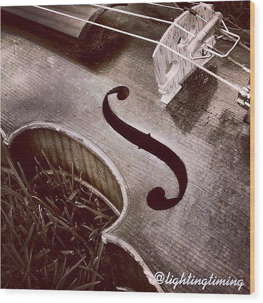 Culture & Texture #violin #classical Wood Print