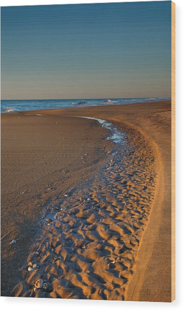 Curving To The Sea I Wood Print by Steven Ainsworth