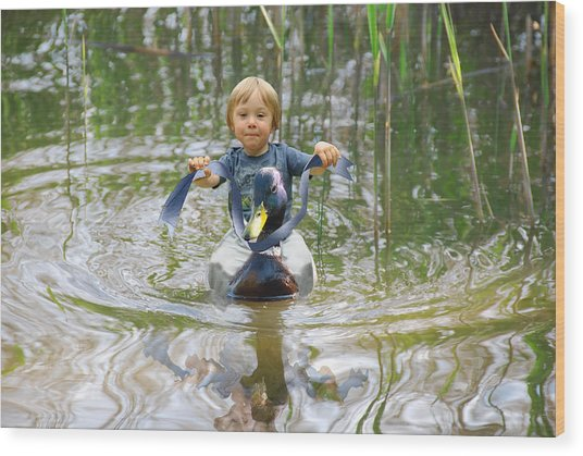 Cute Tiny Boy Riding A Duck Wood Print by Jaroslaw Grudzinski