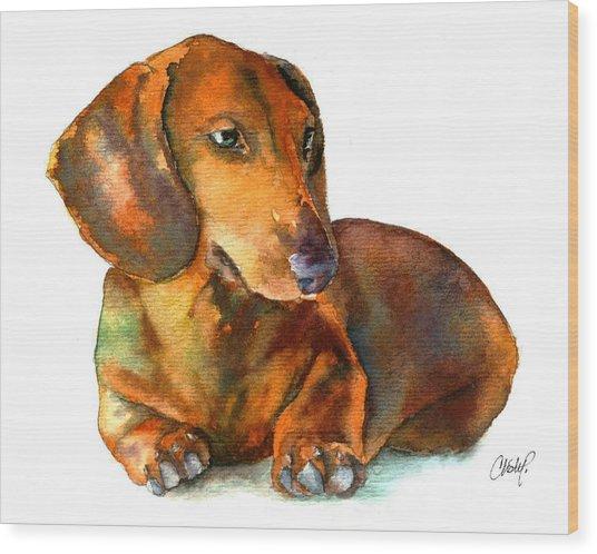 Dachshund Puppy Wood Print