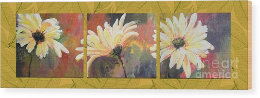 Daisies Three Wood Print