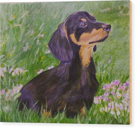 Daisy In Clover Wood Print
