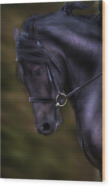Dark Bay Horse Head Wood Print