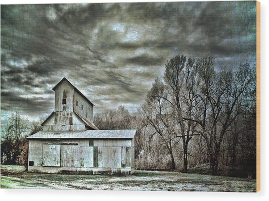 Dark Skies Wood Print by Elizabeth Wilson