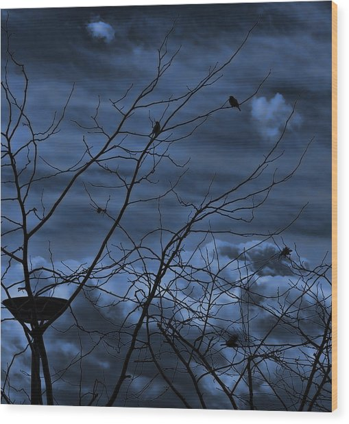 Darkblue Wood Print by Amr Miqdadi