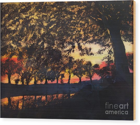 Dawn On The Canal Wood Print
