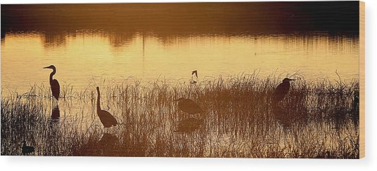 Days End At The Wetlands Wood Print