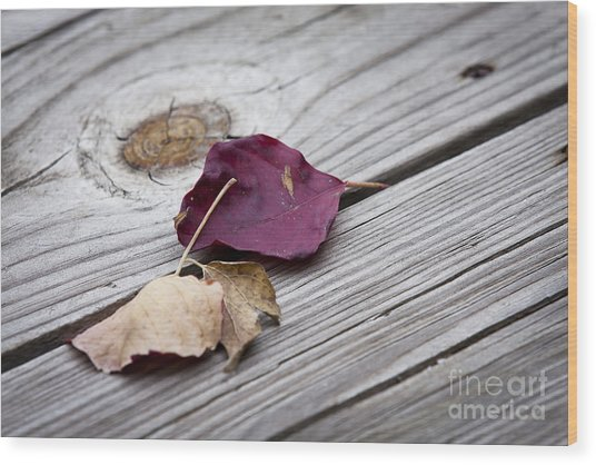 Dead Leaves Wood Print