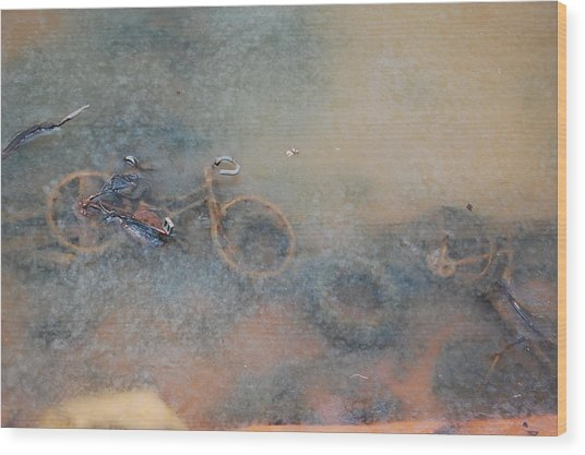 Debris In Canal Bed Wood Print