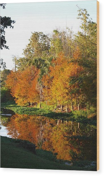 Wood Print featuring the photograph December Morn On Deerfield Creek by Judy Hall-Folde