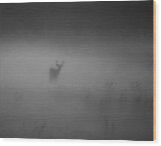 Deer In The Fog Wood Print by Nicholas Palmieri
