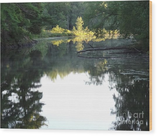 Deer River In Early Sun Wood Print