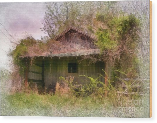 Derelict Shed Wood Print by Susan Isakson
