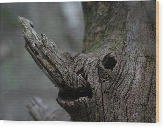 Derg Corra Wood Print by Sean Green