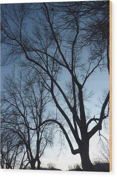 Desendants Wood Print by Dan Stone