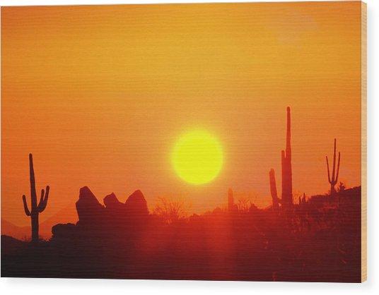 Desert Sun Wood Print by Robert Wiley