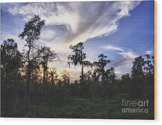 Destrehan Swamp Sunset Wood Print by Jeanne  Woods