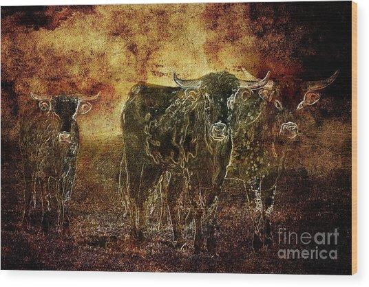 Devil's Herd - Texas Longhorn Cattle Wood Print