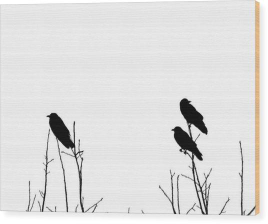 Did You Hear That Wood Print by Tom McCarthy
