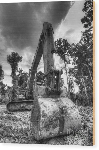 Digging The Rainforest Wood Print