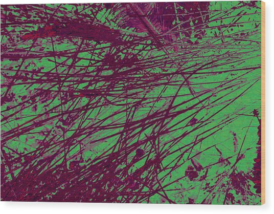 Digitized Nature Wood Print by Colleen Cannon