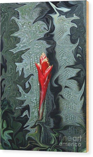 Disney Flower Wood Print by Barry Shaffer