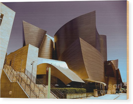 Disney Music Hall I Wood Print