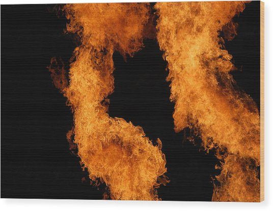 Divine Fire Wood Print by Michelle Visconti