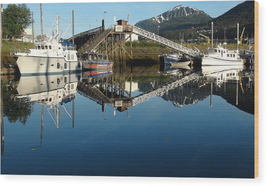 Does Anyone Have A Mirror Wood Print by Susan Stephenson