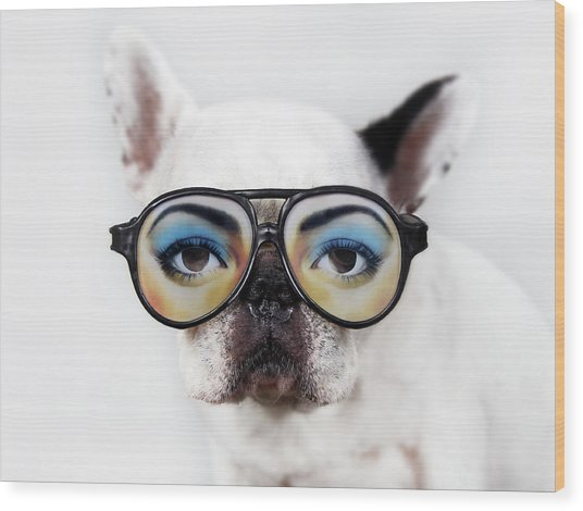 Dog Wear Glasses Wood Print by Retales Botijero