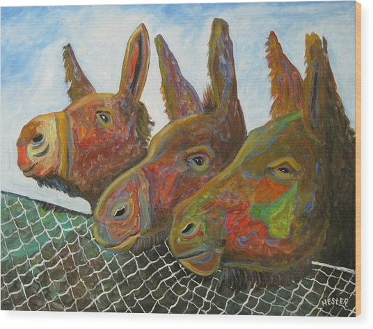 Donkey Doo Wood Print by Don  Hester