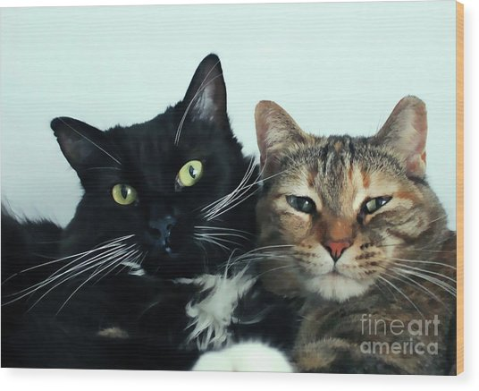 Double Trouble 1 Wood Print