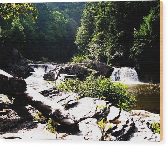 Double Waterfalls Wood Print by Carrie Munoz