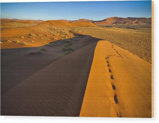 Down Dune Wood Print